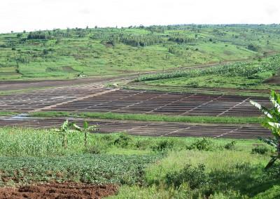 Irrigation of Kanyonyomba marschland (Rwanda)